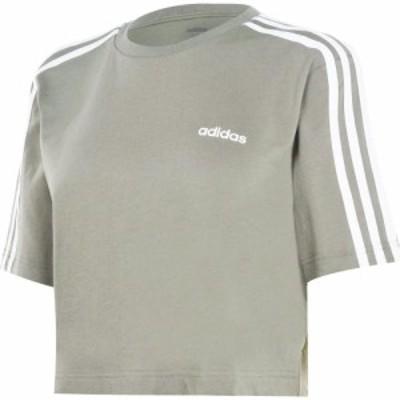 アディダス adidas レディース フィットネス・トレーニング Tシャツ トップス 3S Crop T Shirt Legacy Green