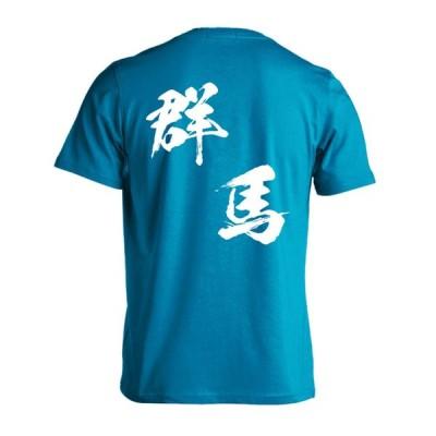 ハンドボール Tシャツ 都道府県デザイン 群馬 闘龍書体 斜め書き 大きいサイズ XXL以上 全16色 ドライ プロテッジ PROTEGGi