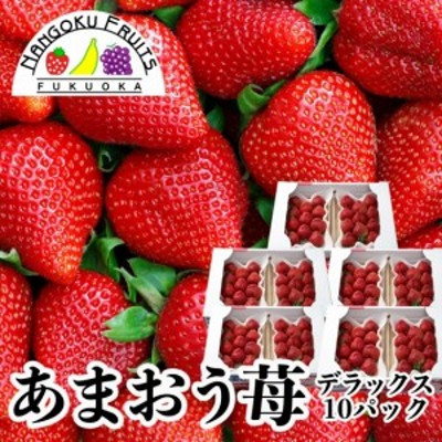 南国フルーツ【予約販売】福岡産あまおう苺・デラックス10パック