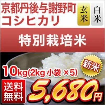 令和2年(2020年) 京都丹後与謝野町産 コシヒカリ 10kg(2kg×5袋)【送料無料】【特別栽培米】【白米・玄米選択】【米袋は真空包装】