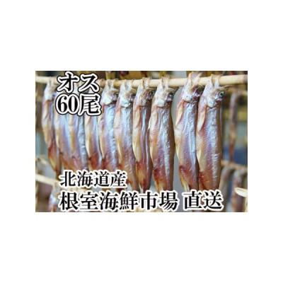 ふるさと納税 <12月6日決済分まで年内配送> 根室海鮮市場<直送>ししゃも(オス)60尾 A-28035 北海道根室市