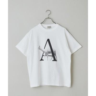 tシャツ Tシャツ 【PARKIES/パーキーズ】ANIMAL PATTERN PRINT TEE/オーガニックコットンアニマルアルファベットプリント