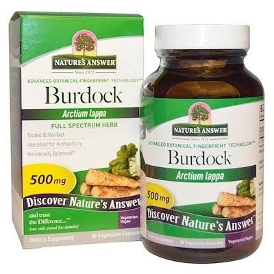 Burdock, Full Spectrum Herb, 500 mg, 90 Vegetarian Capsules