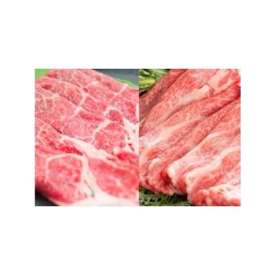 ふるさと納税 EN004_ 佐賀牛食べ比べセット(カタ肉270g モモ肉250g) 佐賀県みやき町