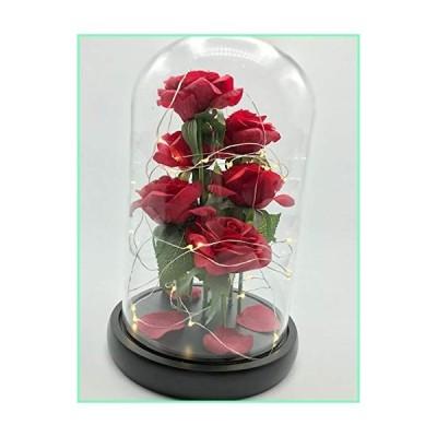 美女と野獣 ローズレッド エンチャントとLEDライト 落ちた花びら 木製ベースにガラスドーム付き バレンタイン