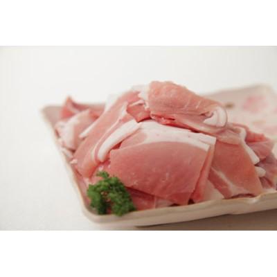 小林市産 豚切り落としセット(2.4kg:サンキョーミート)