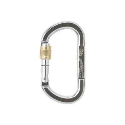 ALPIN OVAL ASYMM XL スクリューロック 線径13.5 シルバー TP11AK
