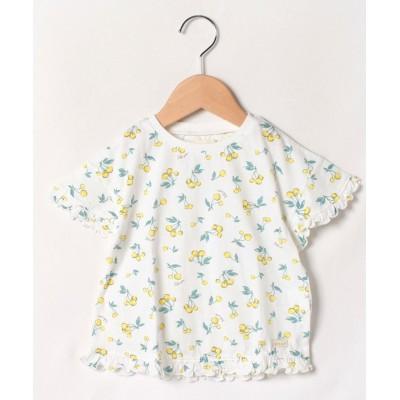 【キムラタン】 Tシャツ(半袖) キッズ イエロー 90 KIMURATAN