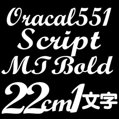 22センチ ScriptMTBold Oracal551 デカール 切文字シール カッティングシール カッティングステッカー マーキングフィルム カッティングデカール
