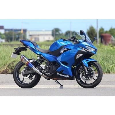 アールズギア Kawasaki Ninja250 ニンジャ250 用 ワイバンリアルスペック タイプR スリップオン チタンドラッグブルー RK33-03RD
