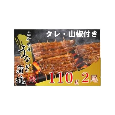ふるさと納税 TY013高知県産うなぎ蒲焼き220g! (110g?2尾) 高知県須崎市