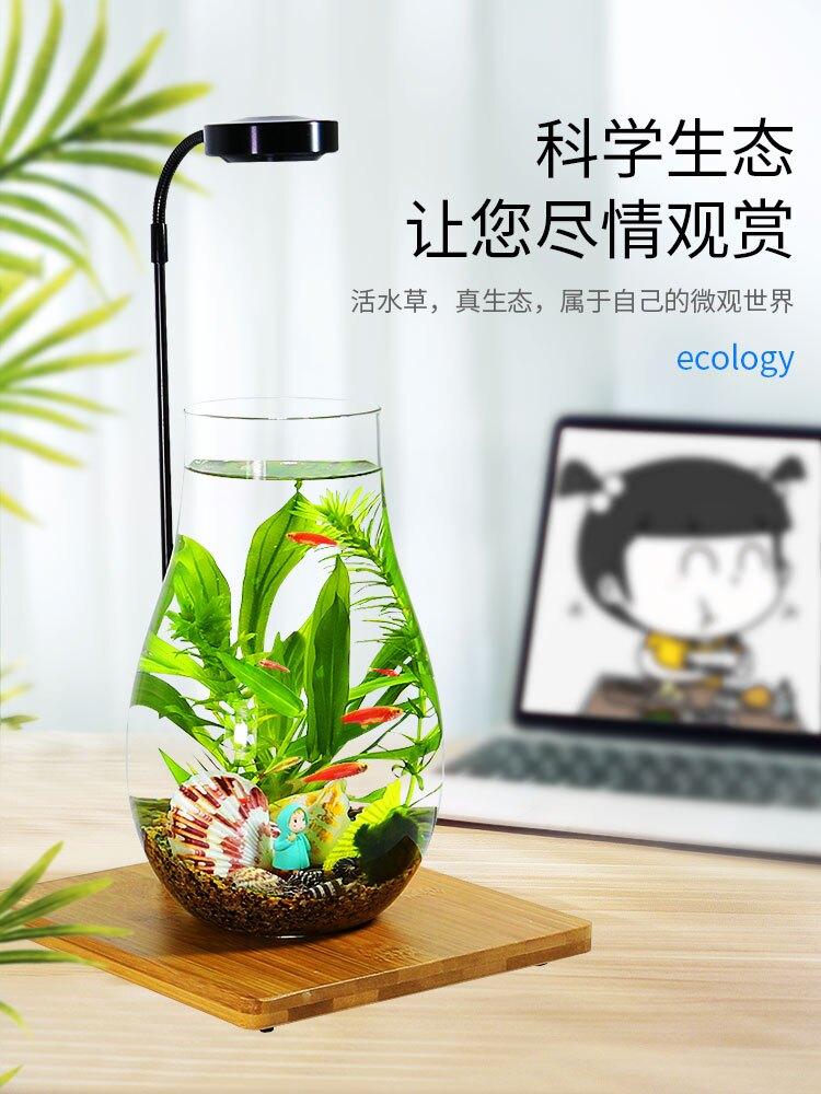 帶LED燈迷你水族箱創意diy生態瓶魚微景觀辦公桌面小型玻璃魚缸(不送魚)
