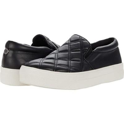 スティーブマッデン Gills-Q Sneaker レディース スニーカー Black