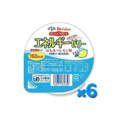 おいしくサポート エネルギーゼリー はちみつレモン 98g【6個セット】 ハウス食品【YS】