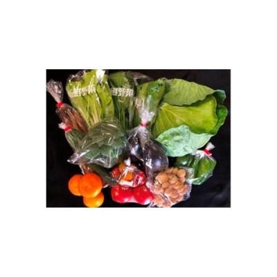 ふるさと納税 野菜果物詰め合わせセット(10種類程度) 鹿児島県大崎町