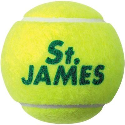SRIXON スリクソン  テニスボール セントジェームス 4ヶ入り STJAMESI