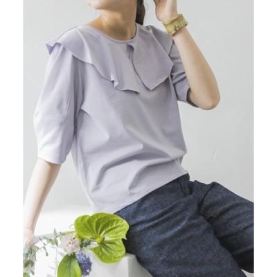 tシャツ Tシャツ 襟付きカットソー
