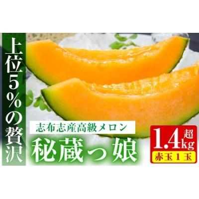 a5-060 【春限定】極上メロン「秘蔵っ娘」赤玉(赤肉)1個