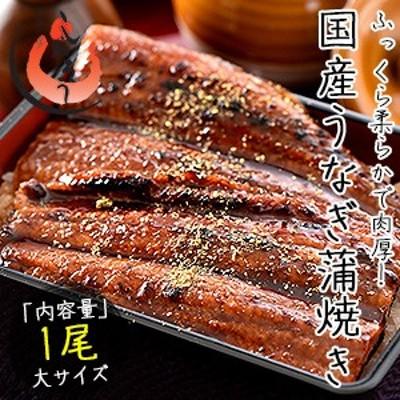 うなぎ 蒲焼き 国産 大サイズ 170g×1尾 ウナギ 鰻