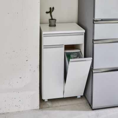 インテリア雑貨 日用品 掃除用品 ゴミ箱 分別ゴミ箱 家具 《2分別》ペールのふたが自動で開閉する 分別ダストワゴン 幅50.5cm 589514
