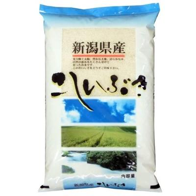 こしいぶき 新米 米5kg 新潟県産 北陸 越後の米 令和3年産