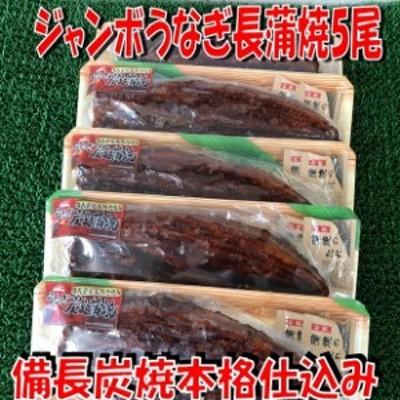 マルハニチロ 中国産ウナギ長蒲焼5尾 ジャンボサイズ(合計約1650g) のし対応 お歳暮 お中元 ギフト BBQ 魚介