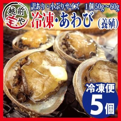 アワビ あわび 鮑 (高級 養殖) 5個入(1個50〜60g) ギフト 海鮮鍋 セット グルメ おせち 海鮮丼 BBQ ((冷凍))