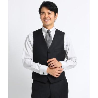 TAKEO KIKUCHI(タケオキクチ) オルタネイトシャドーストライプスーツ Fabric by DORMEUIL