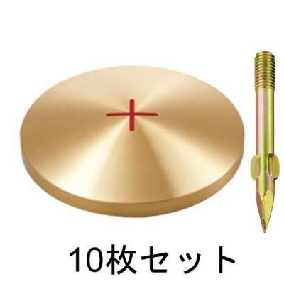 真鍮製基準点鋲 径100mm BS100×10セット:BS100