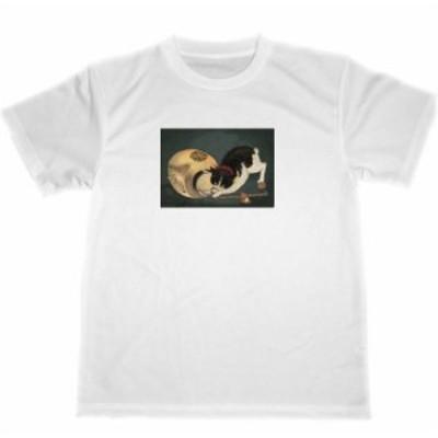 小林清親 猫 ドライTシャツ ブチネコ 猫グッズ 可愛い Tシャツ ねこ