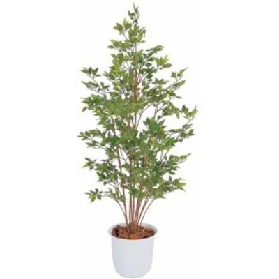 人工植物 ベンジャミン グリーン 鉢付 1.5m  GD-120G(21574400)(タカショー) 送料無料 観葉植物 人工樹 室内用 インテリア グ