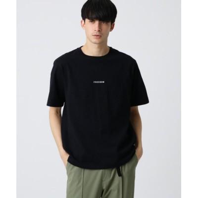 【ドレステリア】 ミニロゴ天竺コットン(綿)Tシャツ メンズ ブラック 90(S) DRESSTERIOR