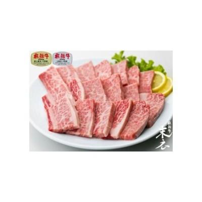 ふるさと納税 【飛騨牛】絶品特上カルビ焼肉500g 岐阜県大垣市
