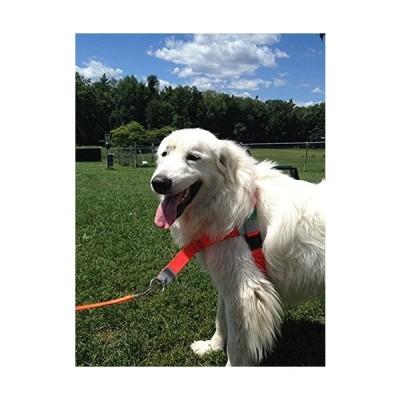 ノン・チョーキング、非引っ張り、犬のハーネス、正面から犬を導く。スポーツエディション、サイズは3〜113