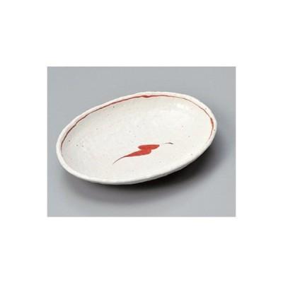 和食器 / 変形皿 唐辛子7.0小判皿 寸法:22.4 x 16.5 x 3.5cm