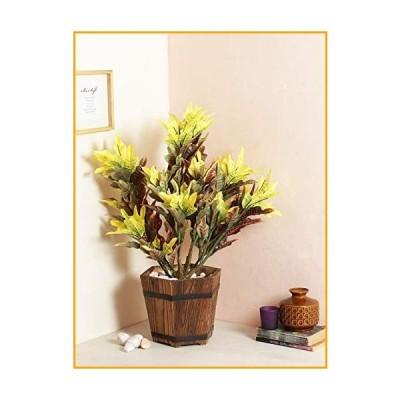 FOUR WALLS Fourwalls Artificial Mini Croton Plant Without Pot [60 cm Tall, Multicolour]【並行輸入品】