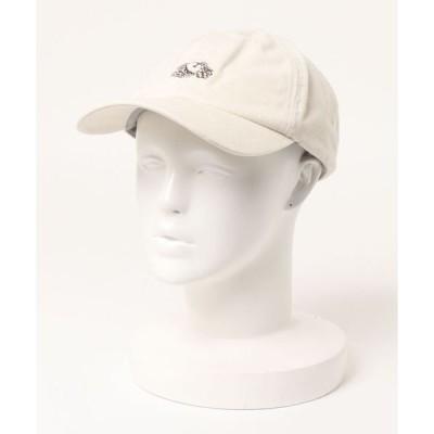 帽子 キャップ FRUIT OF THE LOOM LOGO PIGMENT LOW CAP