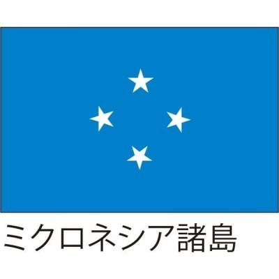 服部【世界の国旗】服部 応援・装飾用旗 ミクロネシア諸島 105×70cm ポンジ 1枚(直送品)