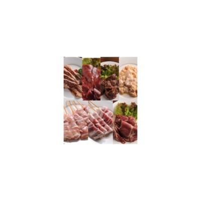 肉のあおやま これさえあれば大宴会 楽々パーティーセット(味付きとり串・味付き豚串・特製ラム肉ジンギスカン・味付き牛カルビ・味付き牛サガリ・