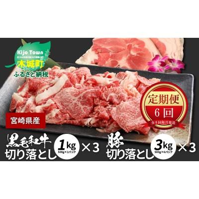 K16_T003 牛肉・豚肉交互にお届け!【6か月定期便】