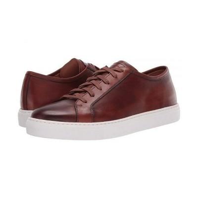 Magnanni マグナーニ メンズ 男性用 シューズ 靴 スニーカー 運動靴 Brando Lo II - Gognac