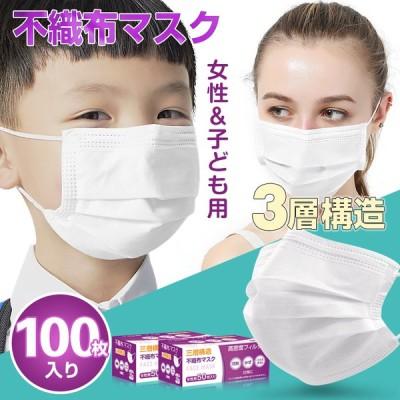 マスク 50枚入り 2箱セット 100枚 使い捨て メルトブローン 不織布 女性用 子ども用 ウィルス対策 防塵 花粉 飛沫感染対策 インフルエンザ 風邪 ny317-100