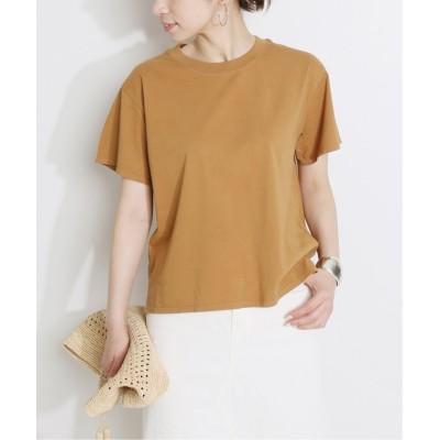 【イエナ】 Tシャツ◆ レディース キャメル XS IENA