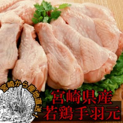 宮崎産若鶏手羽元-500g
