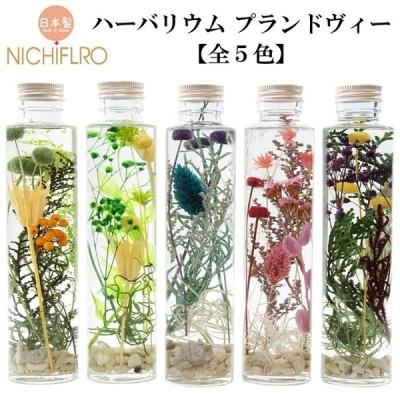 ハーバリウム プランドヴィー 花材 オイル 瓶 花 植物 ギフト インテリア ボトルプランツ プリザーブドフラワー ドライフラワー