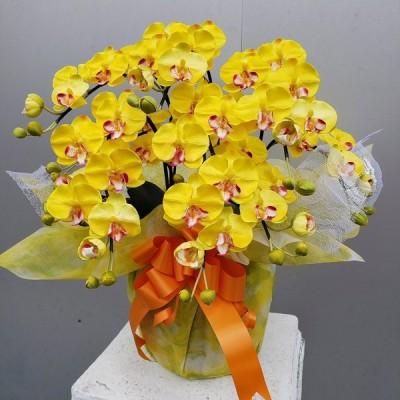 胡蝶蘭S/5F/黄色 (造花)光触媒