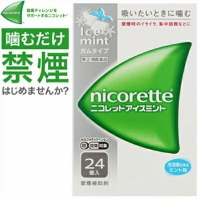 武田薬品工業 ニコレットアイスミント 24個 (指定第2類医薬品)