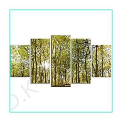 DesignArtグリーンフォレストPanoramic View L & Scapeフォトメタルウォールアート???mt8159 60x32 MT8159-373