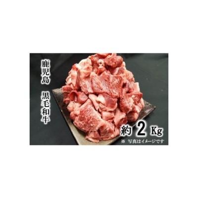 ふるさと納税 【A01009】黒毛和牛 牛すじ〈約2kg〉 鹿児島県肝付町