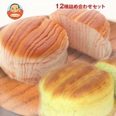送料無料  D-PLUS(デイプラス)  天然酵母パン 12種詰め合わせセット